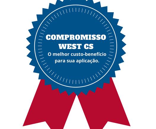 Controladores de Temperatura customizados para você: conheça o compromisso WEST